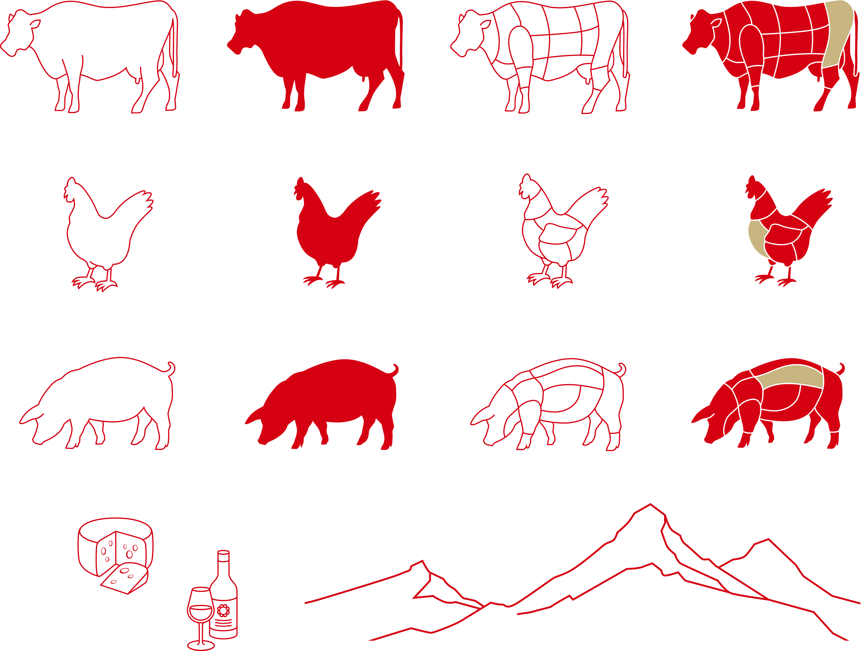 Swiss-Butchery-Illustrations-geordnet